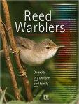 reedwarblers