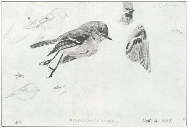 bateman-sketch47