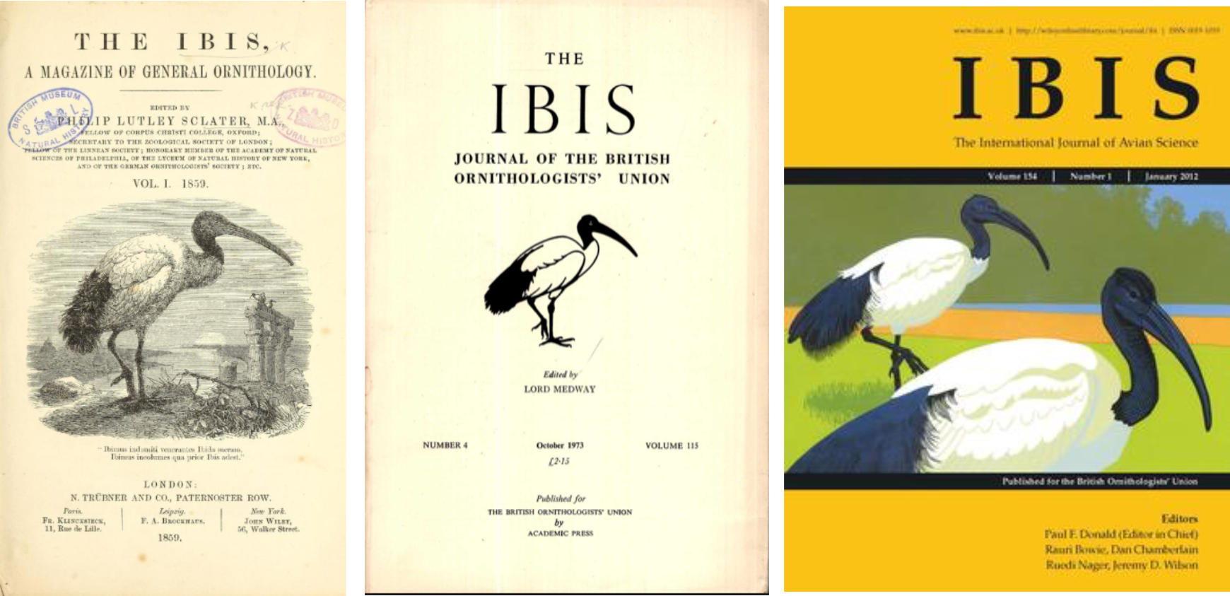 IbisCovers