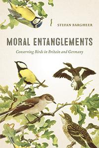 MoralEntanglements